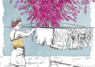 Suzanne Coetzer Bougainvillea, Digital illustration